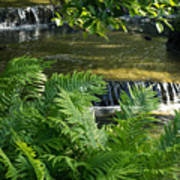 Listen To The Babbling Brook - Green Summer Zen Poster