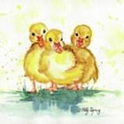 Little Ducks Poster