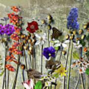 Little Garden Poster
