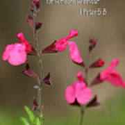 Little Pink Wildflowers With Scripture Poster