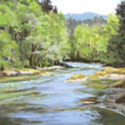 Little River Morning Poster