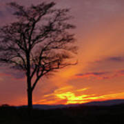 Little Round Top Sunset Poster
