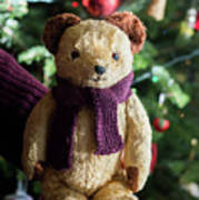 Little Sweet Teddy Bear With Knitted Scarf Under The Christmas Tree Poster