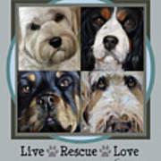 Live Rescue Love Poster