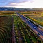 Livermore Wine Country--las Positas Winery Poster