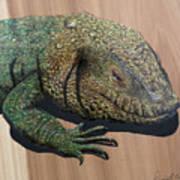 Lizard Art Work Poster