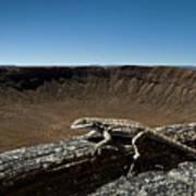 Lizard Crater Poster