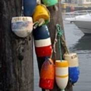Lobster Buoy At Water Taxi Pier Poster
