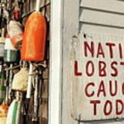 Lobster Shack. Poster by John Greim