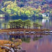 Loch Maree In Autumn Poster