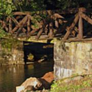 Log Bridge Poster