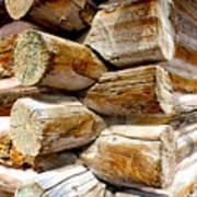 Log Cabin Corner Poster