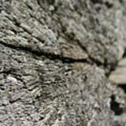 Log Rock Poster