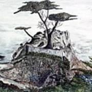 Lone California Tree Poster