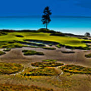 Lone Fir - Hole #15 At Chambers Bay Poster