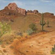 Lone Saguaro In Desert Poster