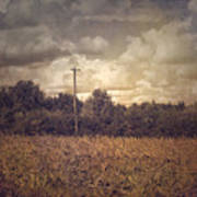 Lone Telephone Pole In Autumn Field Poster