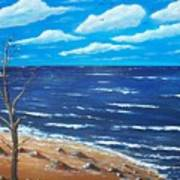 Lone Tree Seascape Poster