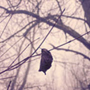Lonely Winter Leaf Poster
