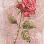 Long Stemmed Rose Poster