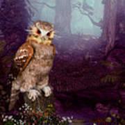 Long Whisker Owl Poster