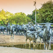 Longhorn Cattle Sculpture In Pioneer Plaza, Dallas Tx Poster