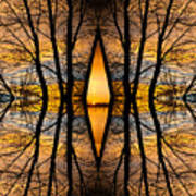 Looking Through The Trees Abstract Fine Art Poster