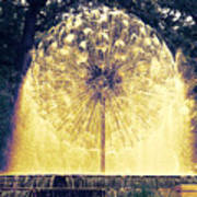Loring Fountain Poster by Rashelle Brown