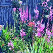 Los Osos Flower Garden Poster
