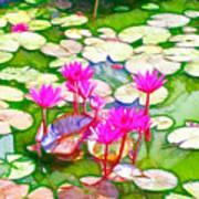 Lotus Flower 3 Poster