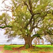Louisiana Dreamin' Poster