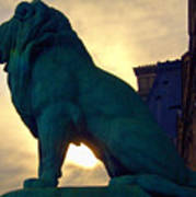 Louve Lion Poster