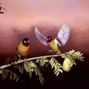 Love Birds By John Junek  Poster