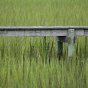 Lowcountry Dock Over Marsh Grass Poster