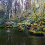 Lower Pond At Portland Japanese Garden Poster
