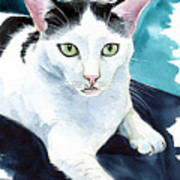 Lucky Elvis - Cat Portrait Poster