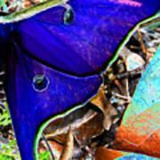 Luna Moth False Color Work One Poster