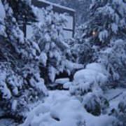 Luscious Snowfall Poster