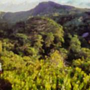 Lush Greenery While Trekking Poster