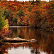 Lynn Woods Birch Pond Fall Colors Poster
