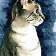 Lynx Point Cat Portrait Poster