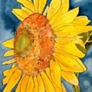 Macro Sunflower Art Poster