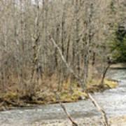 Madawaska Stream Bend Poster