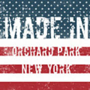 Made In Orchard Park, New York Poster