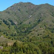 Magical Mountain Tamalpais Poster