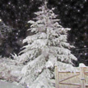 Magical Nighttime Snow Poster