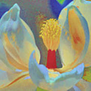 Magnolia Abstract Poster