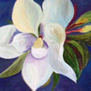 Magnolia Painting Poster