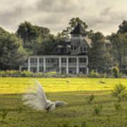 Magnolia Plantation House Poster