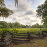 Magnolia Plantation South Carolina Poster